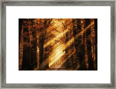 Rayz Framed Print by Martin Podt