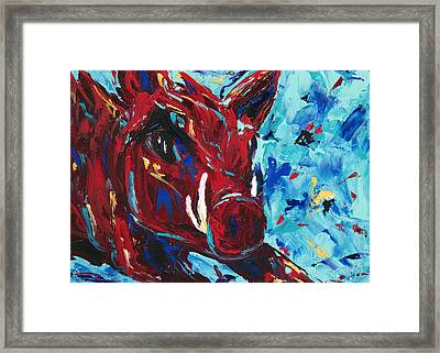 Razorback Framed Print by Beth Lenderman