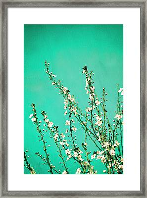 Reach - Botanical Wall Art Framed Print by Melanie Alexandra Price
