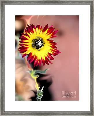 Reach Framed Print by Cheryl Gidding