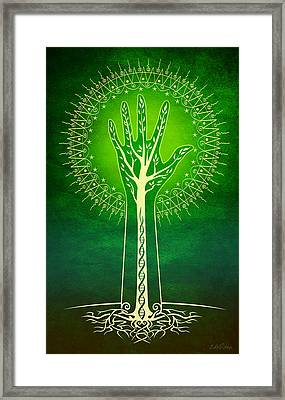 Reach Framed Print by Cristina McAllister