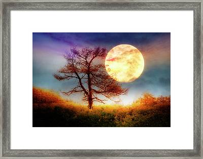 Reach For The Moon Framed Print by Debra and Dave Vanderlaan