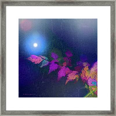 Reaching For The Light Framed Print by Marvin Spates