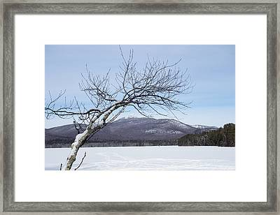 Reaching For The Mountains New Hampshire White Mountains Framed Print by Toby McGuire