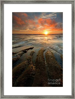 Reaching For The Sea Framed Print