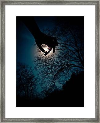 Reaching For The Stars Framed Print by Jessica Brawley