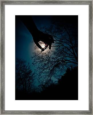 Reaching For The Stars Framed Print
