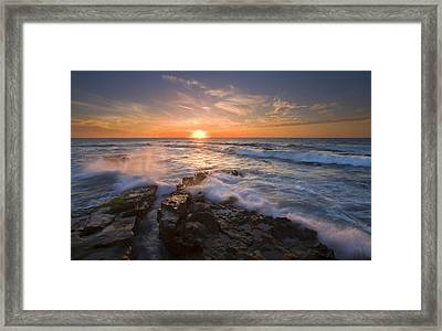 Reaching For The Sun Framed Print by Mike  Dawson