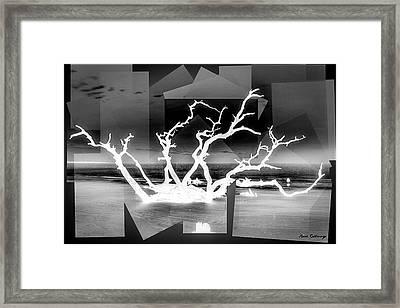 Reaching For You Bw Driftwood Beach Jekyll Island Art Framed Print
