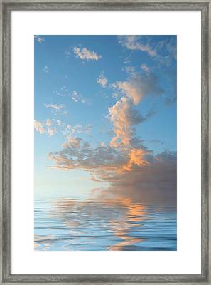 Reaching High Framed Print by Jerry McElroy