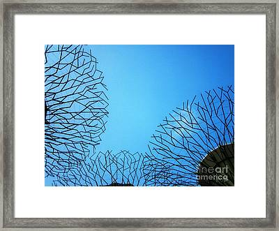 Reaching Out Framed Print by Alina Davis