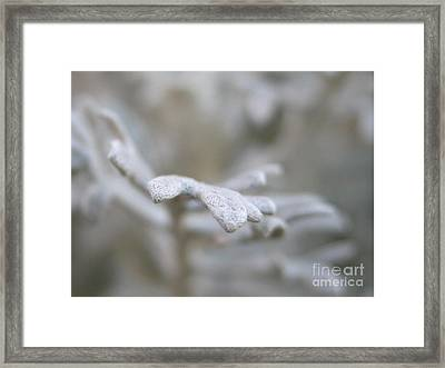 Reaching Out Framed Print by Michelle Hastings
