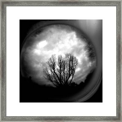 Reaching Framed Print by Paul Anderson