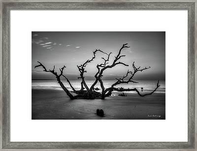 Reaching Too Driftwood Beach Sunrise Jekyll Island Georgia  Jekyll Is Framed Print
