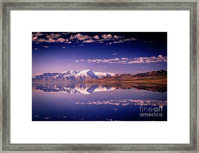 Reacting To The Morning Light Framed Print