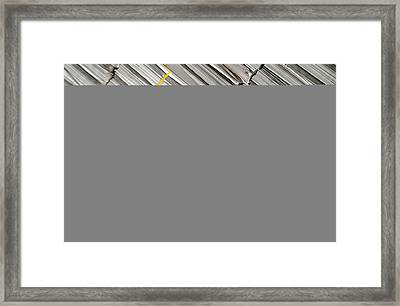 Read All About It Framed Print by Jez C Self