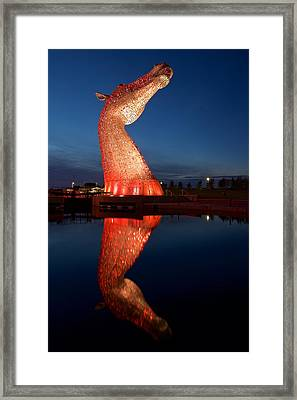 Read Head Reflected Framed Print by Stephen Taylor