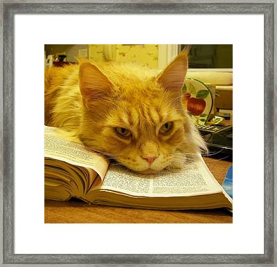 Framed Print featuring the photograph Read Me A Story... by Judy Via-Wolff