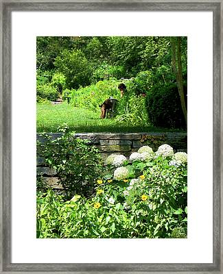 Reading In The Garden Framed Print by Susan Savad