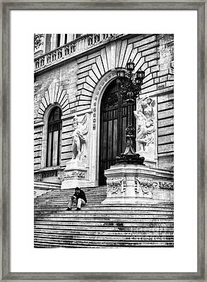Reading Framed Print by John Rizzuto