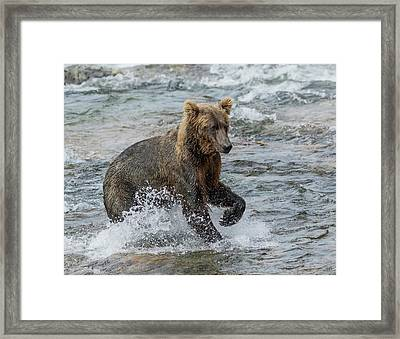 Framed Print featuring the photograph Ready For Action  by Cheryl Strahl