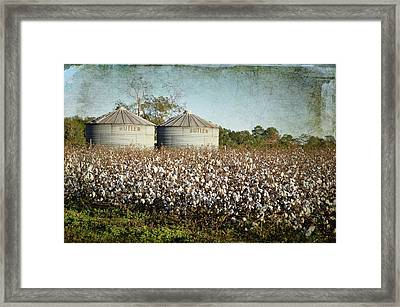 Ready For Harvest Framed Print