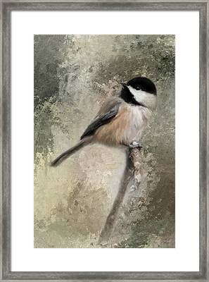 Ready For Spring Seeds Framed Print
