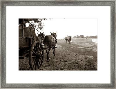 Ready For Sundown Framed Print by Toni Hopper
