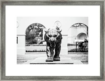 Ready For The Challenge - Bw Framed Print