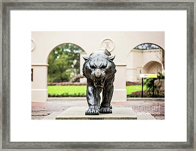 Ready For The Challenge Framed Print