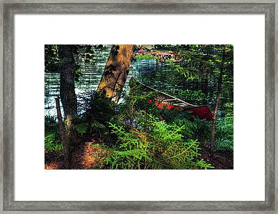 Ready To Explore Framed Print by David Patterson