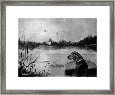 Ready To Fetch Framed Print by Ron Landry