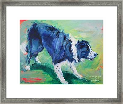 Ready To Fly - Border Collie Framed Print