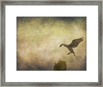 Ready To Land Framed Print by Rebecca Cozart