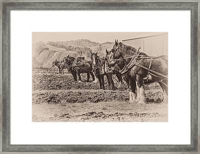 Ready To Plow Framed Print by Joe Hudspeth