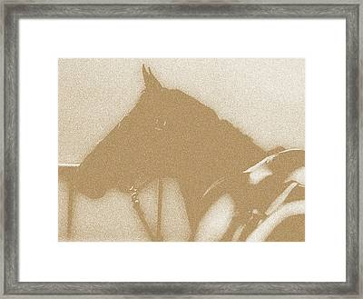 Ready To Ride Framed Print by Donna Thomas