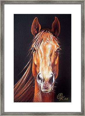 Ready To Run Framed Print