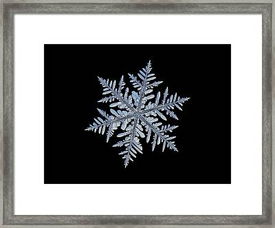 Real Snowflake - Silverware Black Framed Print