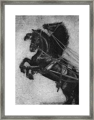 Rearing Horses Framed Print by Eric Fan