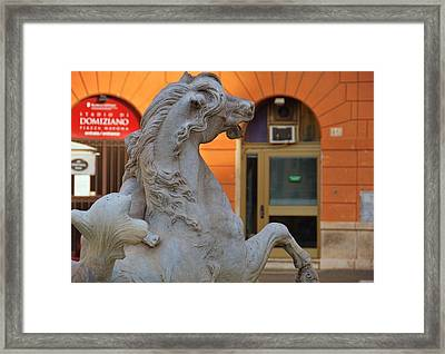 Rearing Sea-horse Framed Print by JAMART Photography