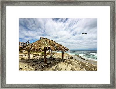 Rebirth  At Windandsea Framed Print by Peter Tellone