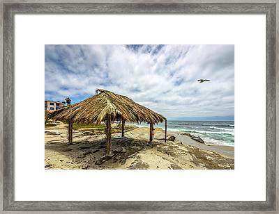 Rebirth  At Windandsea Framed Print