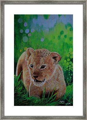 Rebirth Framed Print by Don MacCarthy