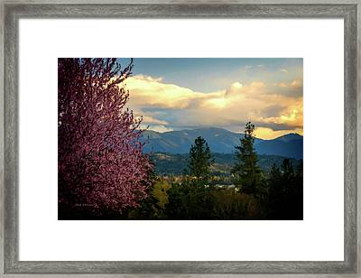 Rebirth In The Rogue Framed Print