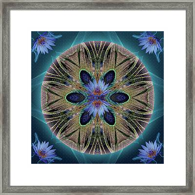 Rebirth Rising Framed Print