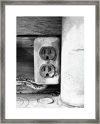 Receptacle Framed Print by Tom Druin