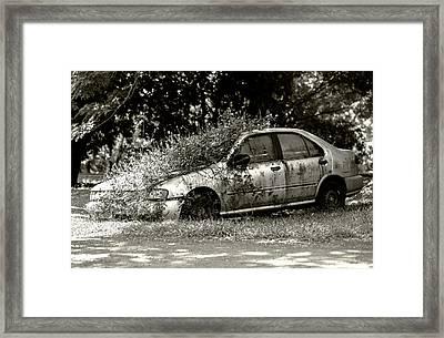 Reclamation Framed Print by Sean Davey