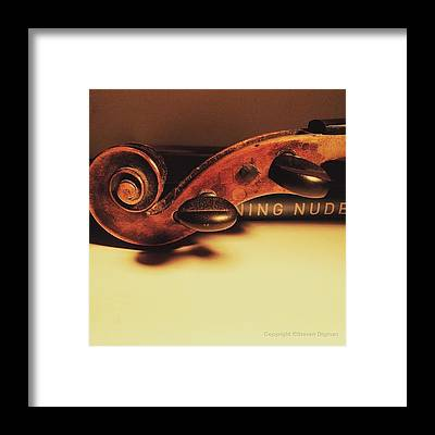 Fiddles Framed Prints