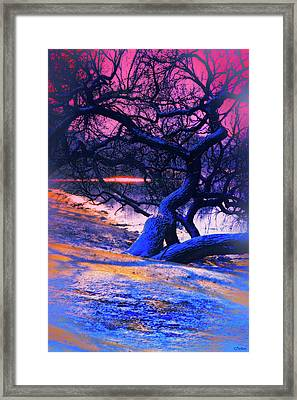Reclining On The Banks Framed Print