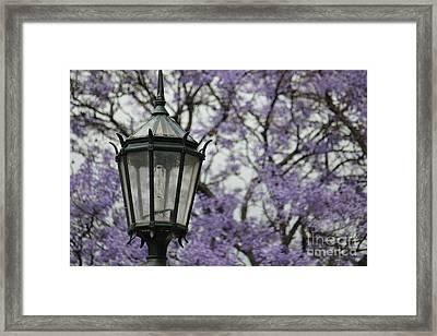 Framed Print featuring the photograph Recoleta by Wilko Van de Kamp